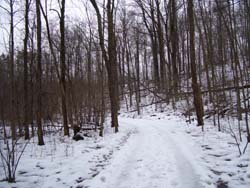 The North Chagrin Bridle Trail just south of Squire's Castle in Winter.